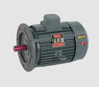 flange mounted motor
